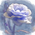 A Rose In Pastel Blue by Joy of Life Art Gallery