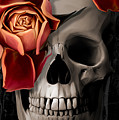 A Rose On The Skull by Canvas Cultures