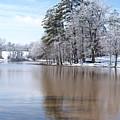 A Rural Lake by Timothy Markley