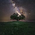 A Sky Full Of Stars by Aaron J Groen