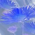 A Slanting Blue Wind  by Jeff Swan