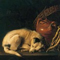 A Sleeping Dog With Terracotta Pot 1650 by Dou Gerrit