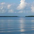 A Special Place In Islamorada Florida Keys by Michelle Wiarda-Constantine