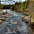 A Spring Day At Little Woodhull Creek by David Patterson