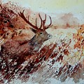 A Stag by Pol Ledent