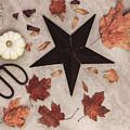 A Star Among The Autumn Leaves by Kim Hojnacki
