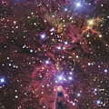 A Stellar Nursery Located Towards by R Jay GaBany