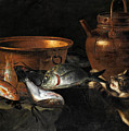 A Still Life Of Fish With Copper Pans And A Cat  by Giuseppe Recco