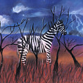 A Stormy Night For A Zebra  by Caroline Peacock
