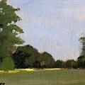 A Streak Of Sun - Queeny Park by Arthur Stauder