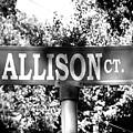 Al - A Street Sign Named Allison by Jenifer West