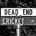 Cr - A Street Sign Named Cricket by Jenifer West