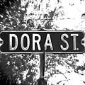 Do - A Street Sign Named Dora by Jenifer West