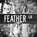 Fe - A Street Sign Named Feather by Jenifer West