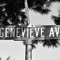 Ge - A Street Sign Named Genevieve by Jenifer West