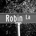 Ro - A Street Sign Named Robin by Jenifer West