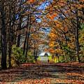 A Stroll Through Autumn Colors by Marcia Lee Jones