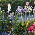 A Summer Garden by Marilyn Hunt