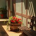 A Sunny Spot by Susanne Van Hulst