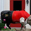 A Swiss Cow In New Glarus Wi by Susanne Van Hulst