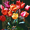 A Time For Tulips by Michael Durst