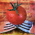 A Tomato Sketch by Clare Bevan
