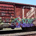 A Train Car Named Desire by Anne Cameron Cutri