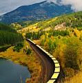 A Train Of Golden Grain  by Jeff Swan