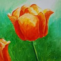 A Tulip For Jolee by Emily Page