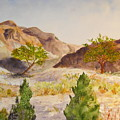 A View At Red Rock by Vicki  Housel