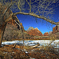 A View In Zion by Christopher Holmes