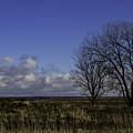 A View So Blue by Doug Daniels
