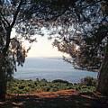 A View To The Sea by Jouko Lehto