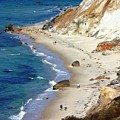 A Walk Along Aquinnah Beach by Carol Groenen