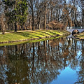 A Walk In The Park Lazienki Warsaw by Carol Japp