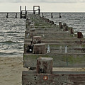 A Walk Into The Gulf by Diane Luke