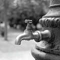 A Water Tap In The Park by Marco Oliveira