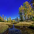 A Western Autumn by Sergei Akulich