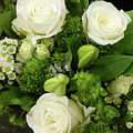 A White Roses Bouquet For You by To-Tam Gerwe