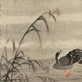 A Wild Goose by Bian Shoumin
