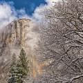 A Winter Scene  by Jonathan Nguyen