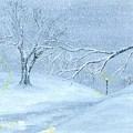 A Winter Walk... by Robert Meszaros