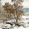 A Winter's Boardwalk by Marilyn Hunt
