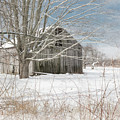 A Winters Day Square by Bill Wakeley