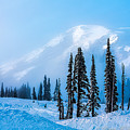 A Wintry Day On Mt Rainier by Karen Mae Walker
