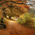A Wooded Path In Autumn by Mountain Dreams