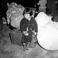 A Young Evacuee Of Japanese Ancestry by Stocktrek Images