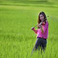 A Young Girl In A Folk Costume Plays A Vivaro In A Green Rice Fi by Somchai Sanvongchaiya