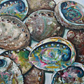 Abalone Shells by Kristine Kainer