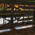Abandon Dock by Allen Williamson
